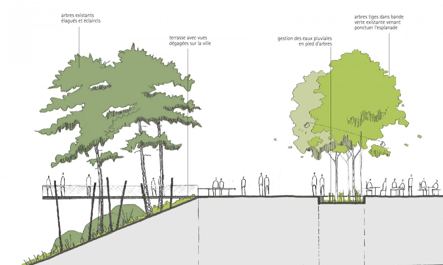 Tekhn architectes o est le jardin des plantes - Jardin des plantes saint etienne ...
